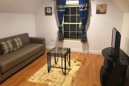 Bronx Well-lit One Bedroom Apartment (Private)