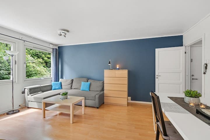 Apartment near  NTNU, Lerkendal,Sintef and center