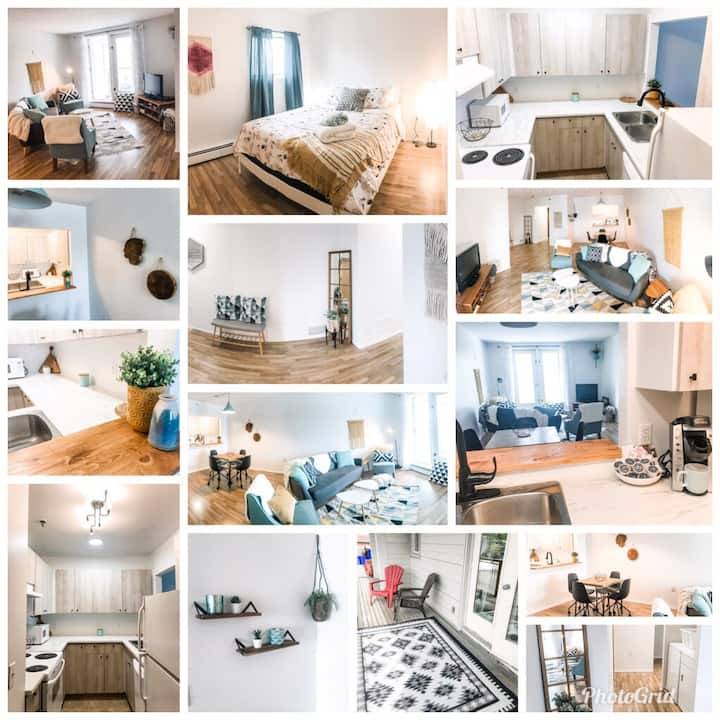 DOWNTOWN Condo close to everything $150