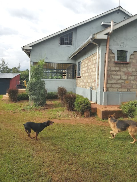 Town House, kitale, Rift Valley