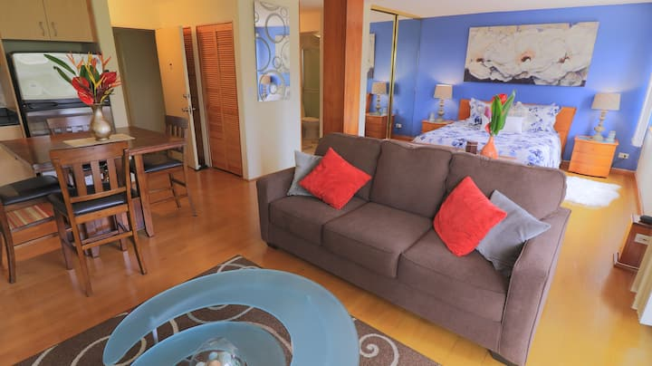 Clean Luxury Waikiki Condo 30 day min Rental