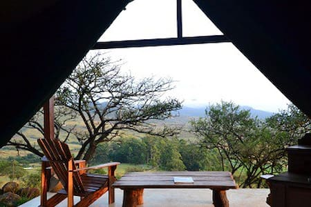 Aloe Tented Camp - Swaziland - 帐篷