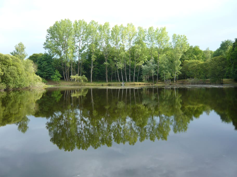 The Main Lake