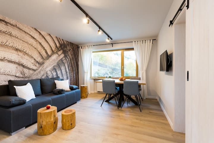 Apartament 7.Sosnowy-Dream Apart
