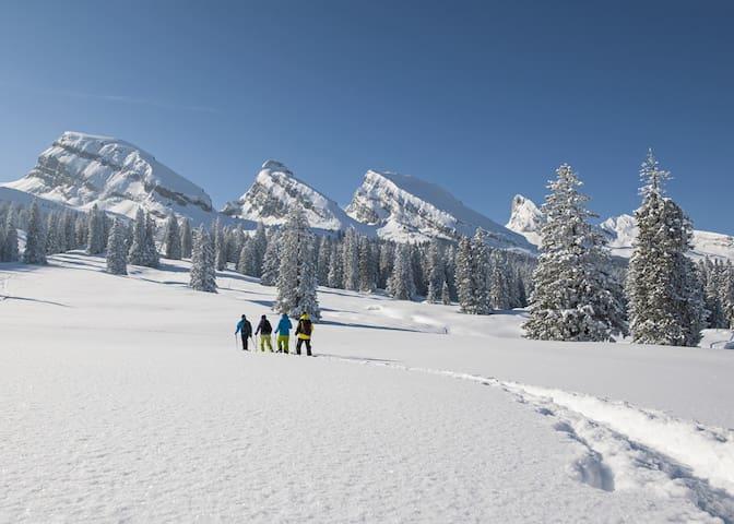 Schneelandschaft Toggenburg