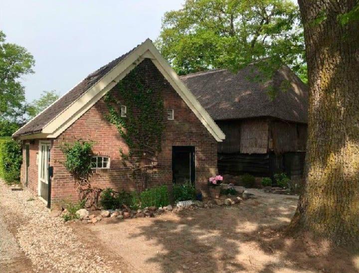 Tiny House Benneveld