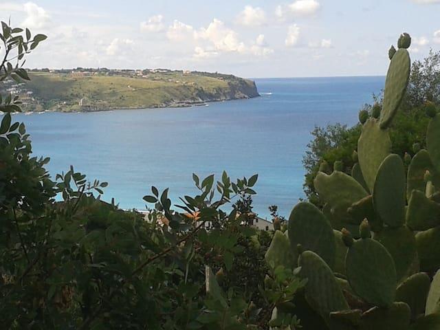 Villino in Parco - Panoramico - - Praia A Mare - Lägenhet