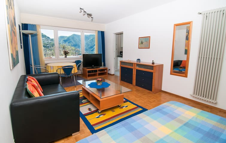 Nice lake view apartment in Lugano - Massagno - Apartment