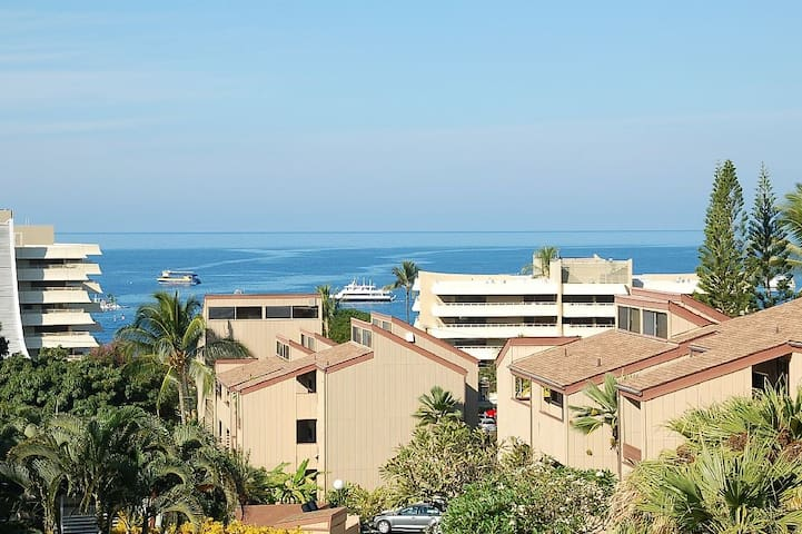 KONA 1BDR BEST LOCATION OFFER FREE AC,WIFI,PARKING