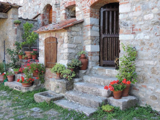 Dream in Tuscany, Colli di Travale - Travale - Appartement
