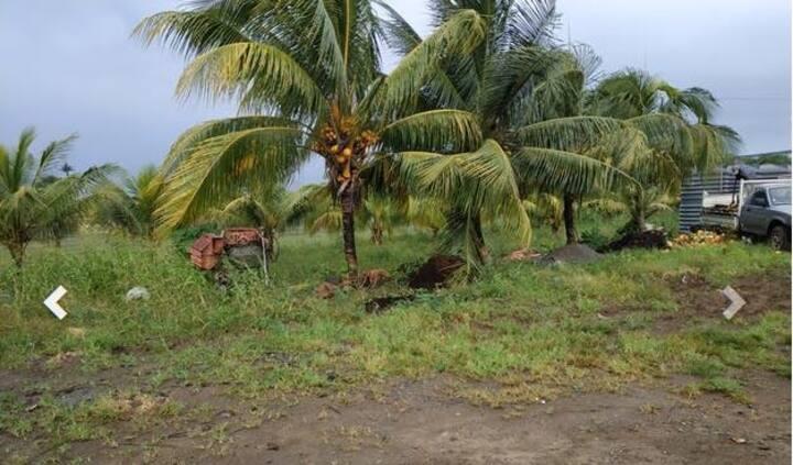 Superbe Eco Studio proche Aeroport - Martinique
