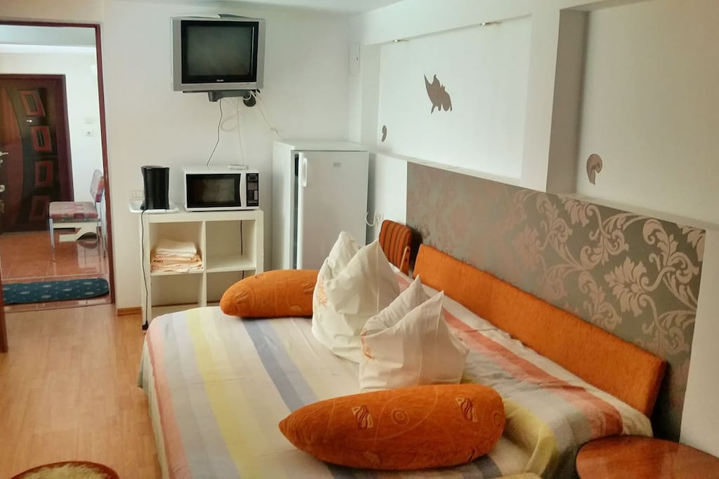 Studio equipped with microwave oven, TV set, fridge and coffee maker