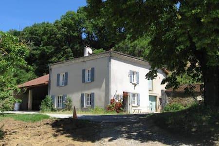 Ferme rénovée du XIXème siècle à 10 mn de l'A7 - Chantemerle-les-Blés - Dom