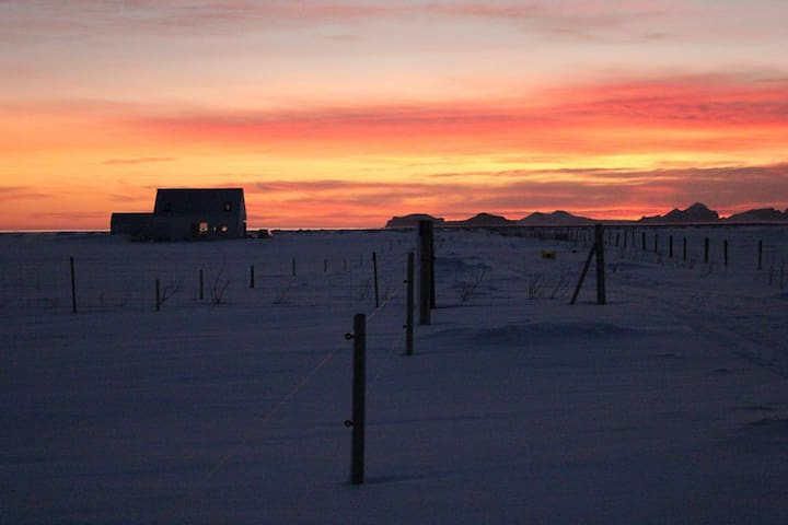 The low December sun