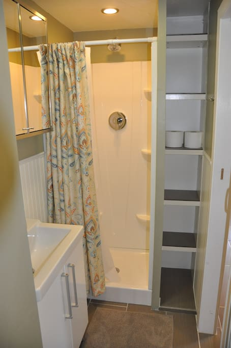 Newly renovated shower with massaging showerhead