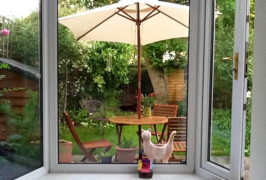 Garden view from the kitchen