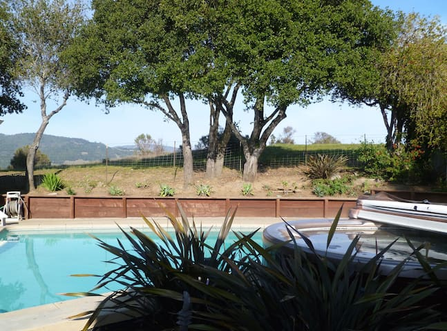 Spa Setting at Gateway to West Marin - Fairfax - Haus