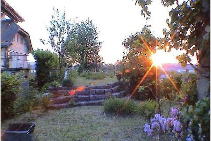 Ruhige Einzimmer - Gartenwohnung am Goetheanum