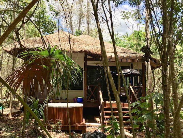 Ecotourism cabin Jungle Riviera Maya Cancún Ruta