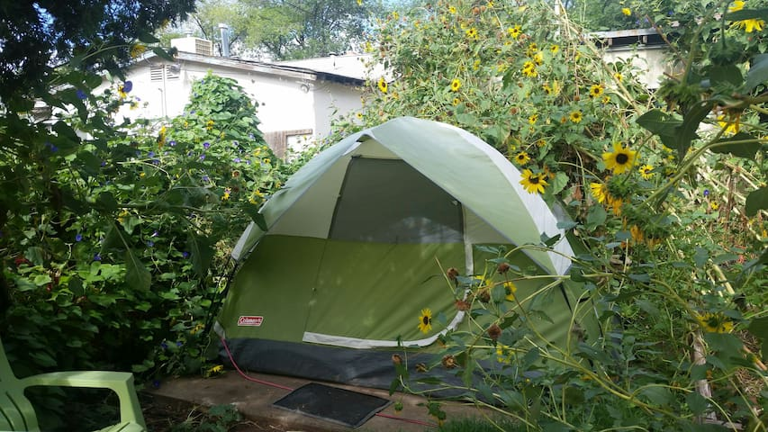 Tent in green Oasis