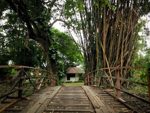 Quiet bungalow for creative-river.