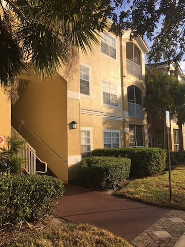 Private room 15 minutes from Tampa - Brandon - Apartment