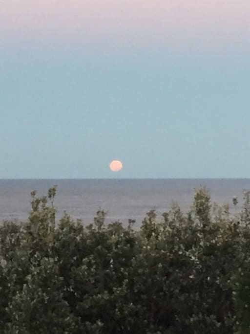 Full moon rising over South Coogee - view from our window