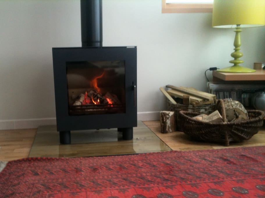 Log burner and logs, for winter breaks