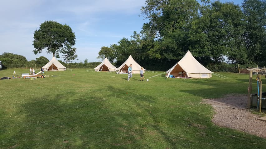 Family Bell Tent in picturesque field - Studland
