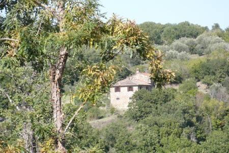 Immersion en pleine nature entre Toscane et Ombrie
