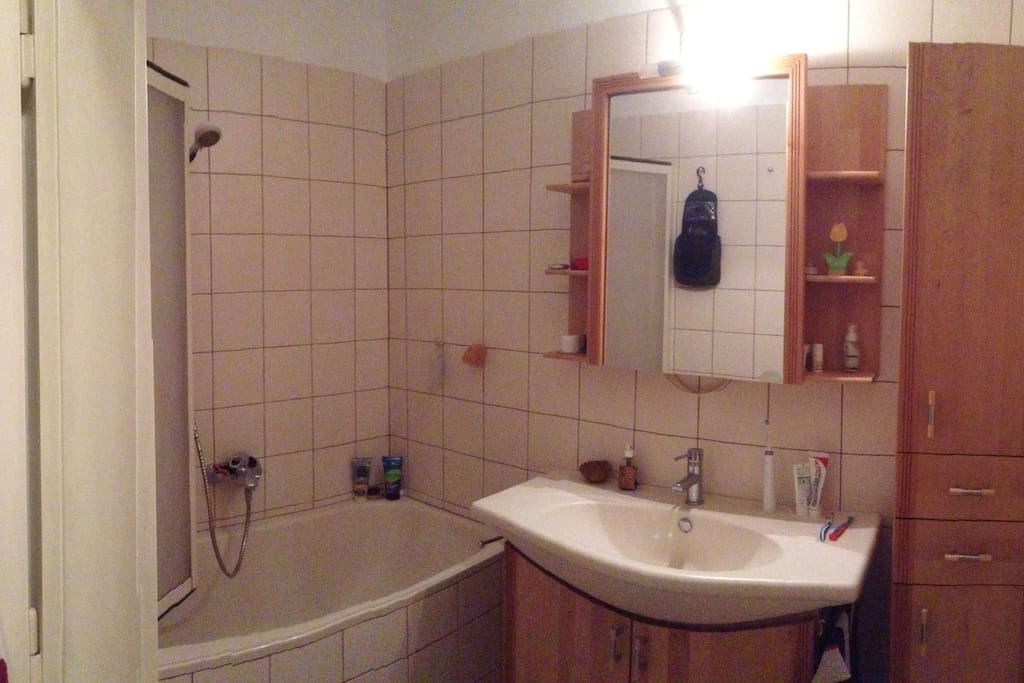 The bathroom, with a shower and a bathtub. You have a compartment in the closet to put your personal hygienic products.