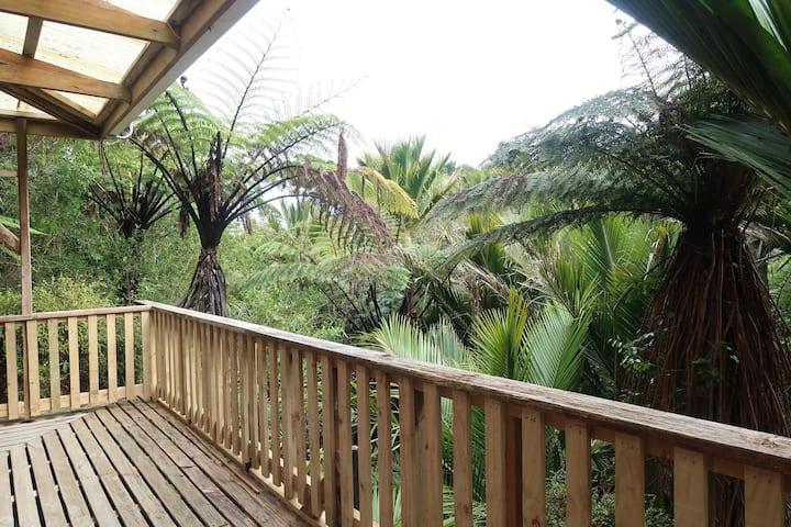 Te Nikau House with rain-forest view