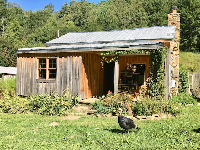 A Farmhouse experience with the animals!