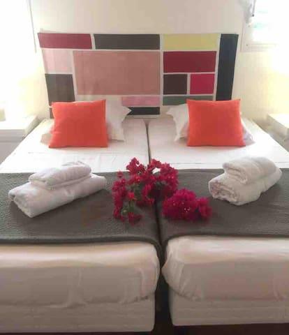 Chambre N°2 avec 2 lits 90 rapprochables salle de douche à l'italienne attenante..et dressing