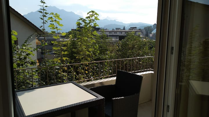 Cosy flat 15/1 near Lion monument Lucerne