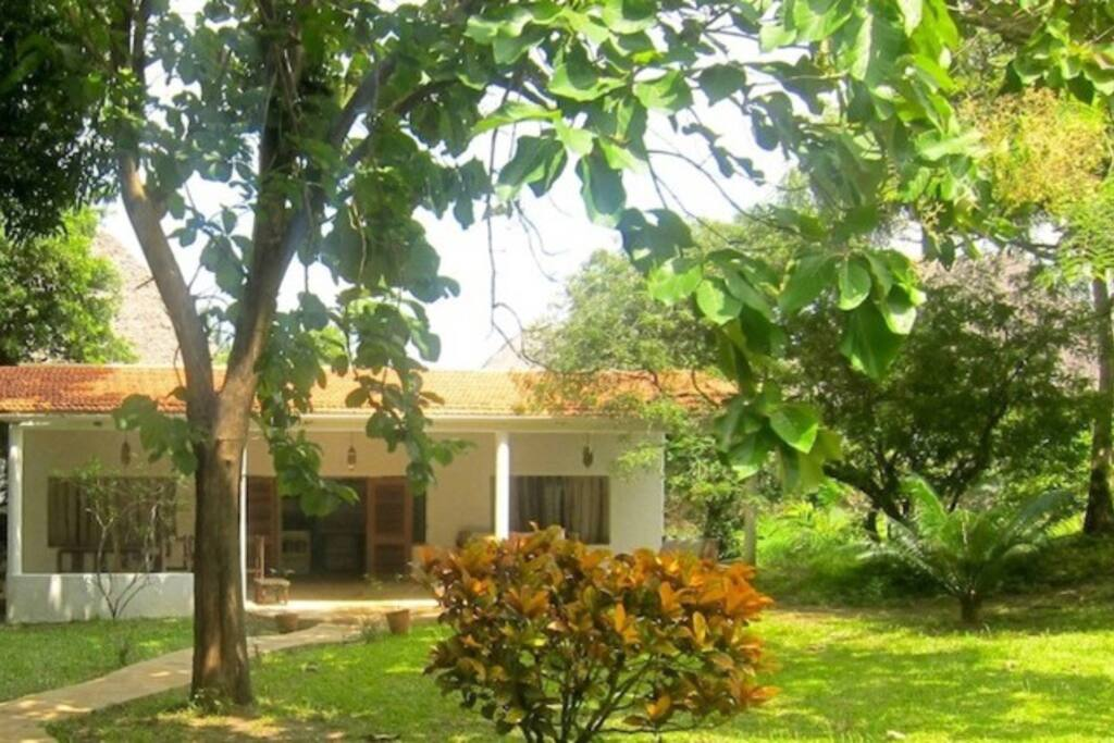 2 b/r house is located in the tropical gardens behind a beachfront house
