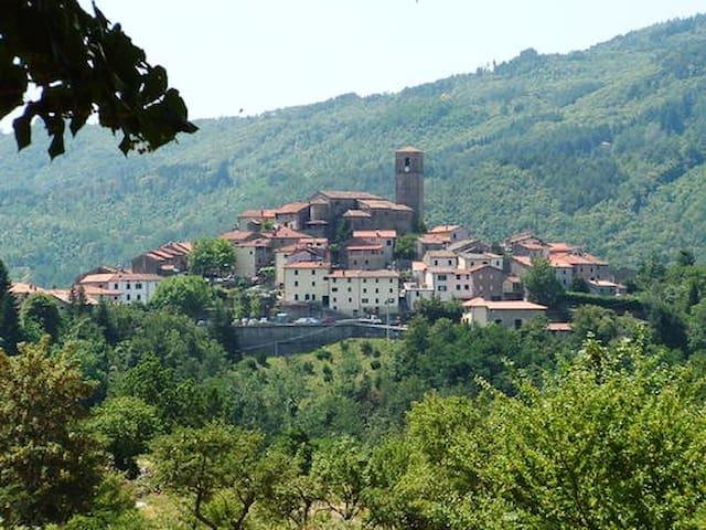 Graziosa casa in borgo medievale - Piteglio - 단독주택