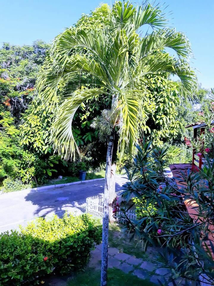 Casa em vilas do Atlântico  - BAHIA