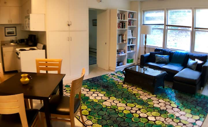H207 Cozy 1 Bedroom in Downtown San Anselmo