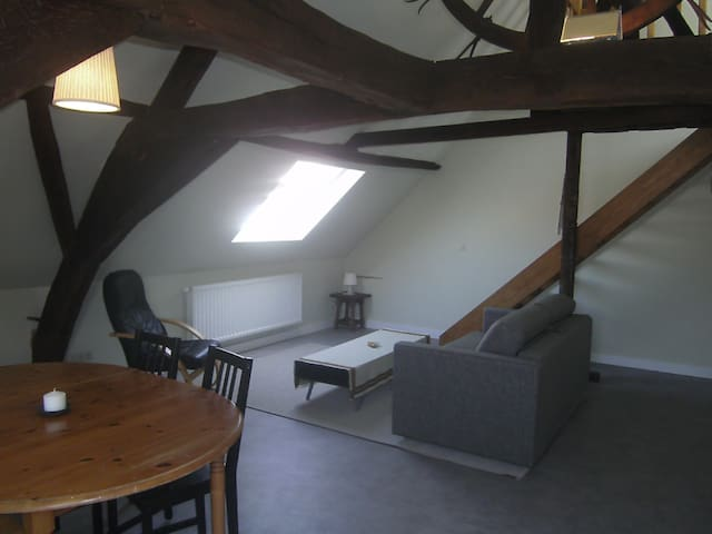 Authentic Loft in City Center - Leuven - Apartment