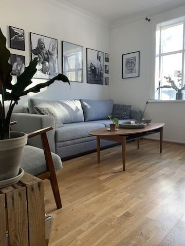 Cosy bohemian flat downtown