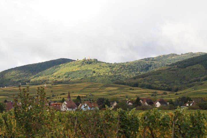 Gîte au pied des vignes : Le Holandsbourg
