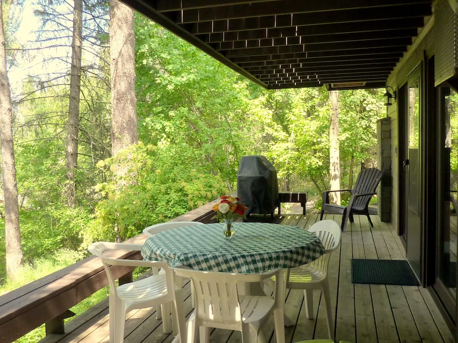 Your deck in the trees with patio table and natural gas Weber BBQ
