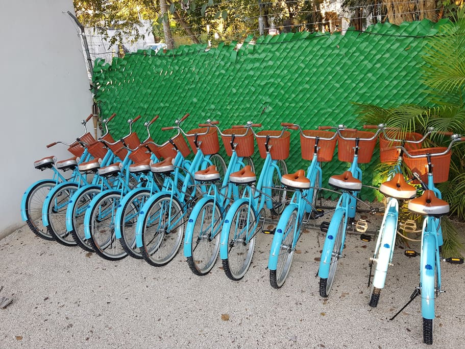 Brand new bikes for free upon availability