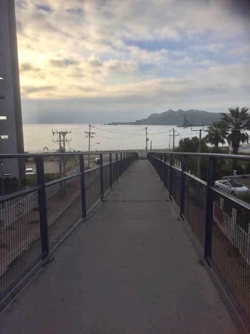 Acceso directo desde el departamento a una de las playas más lindas de la cuarta región !