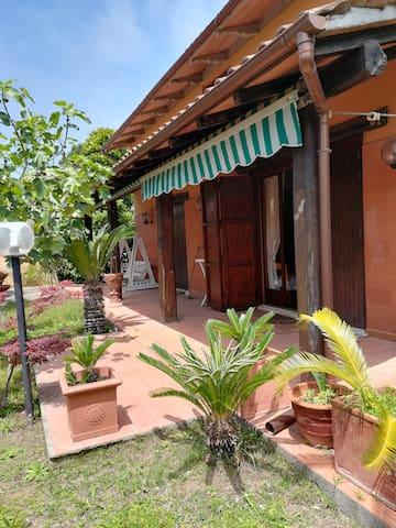 Summer  style house a Lido dei Pini