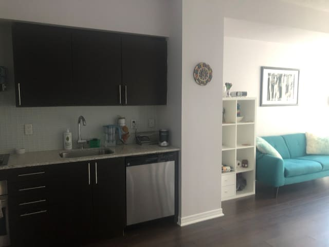 1 BD condo in downtown core, steps to King West