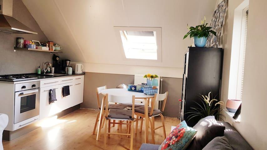 Comfortable Studio Near Amsterdam