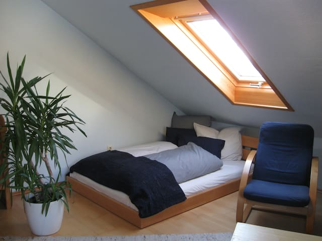 naturnahe, helle Wohnung - vielseitig nutzbar - Aglasterhausen - Apartamento