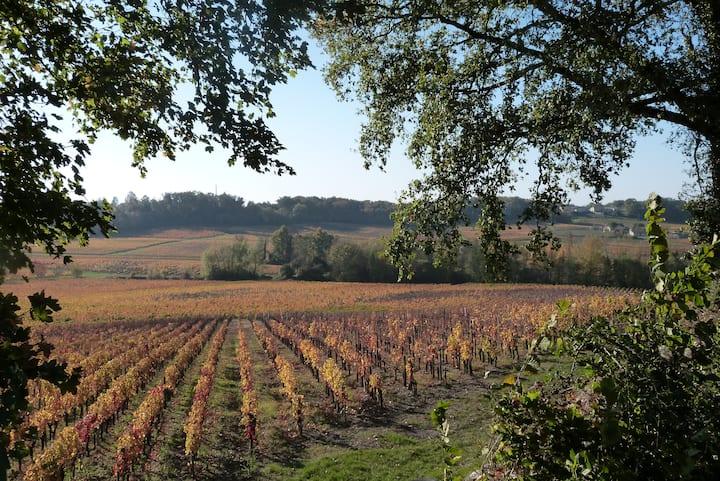 Chambre Individuelle au cœur du vignoble